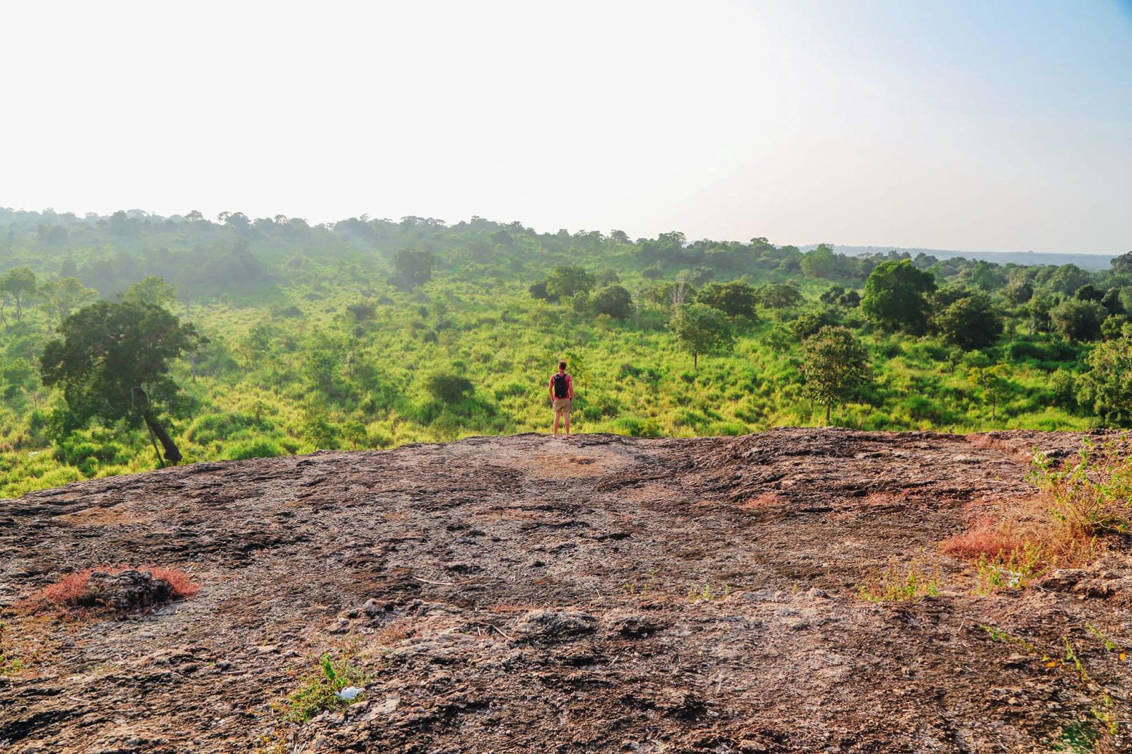 Safari in Mineriya National Park Sri Lanka Elephants (7)