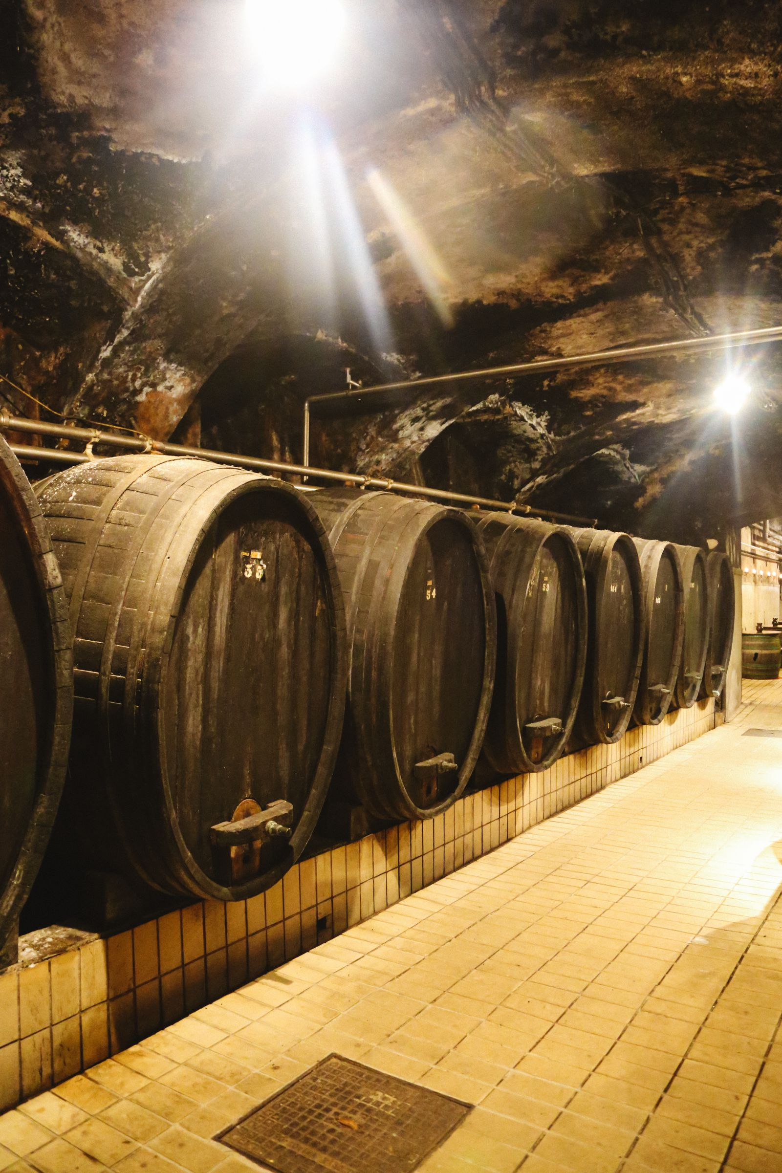There's A Big Reason You Should Visit Slovenia This Year - The Wine! (9)