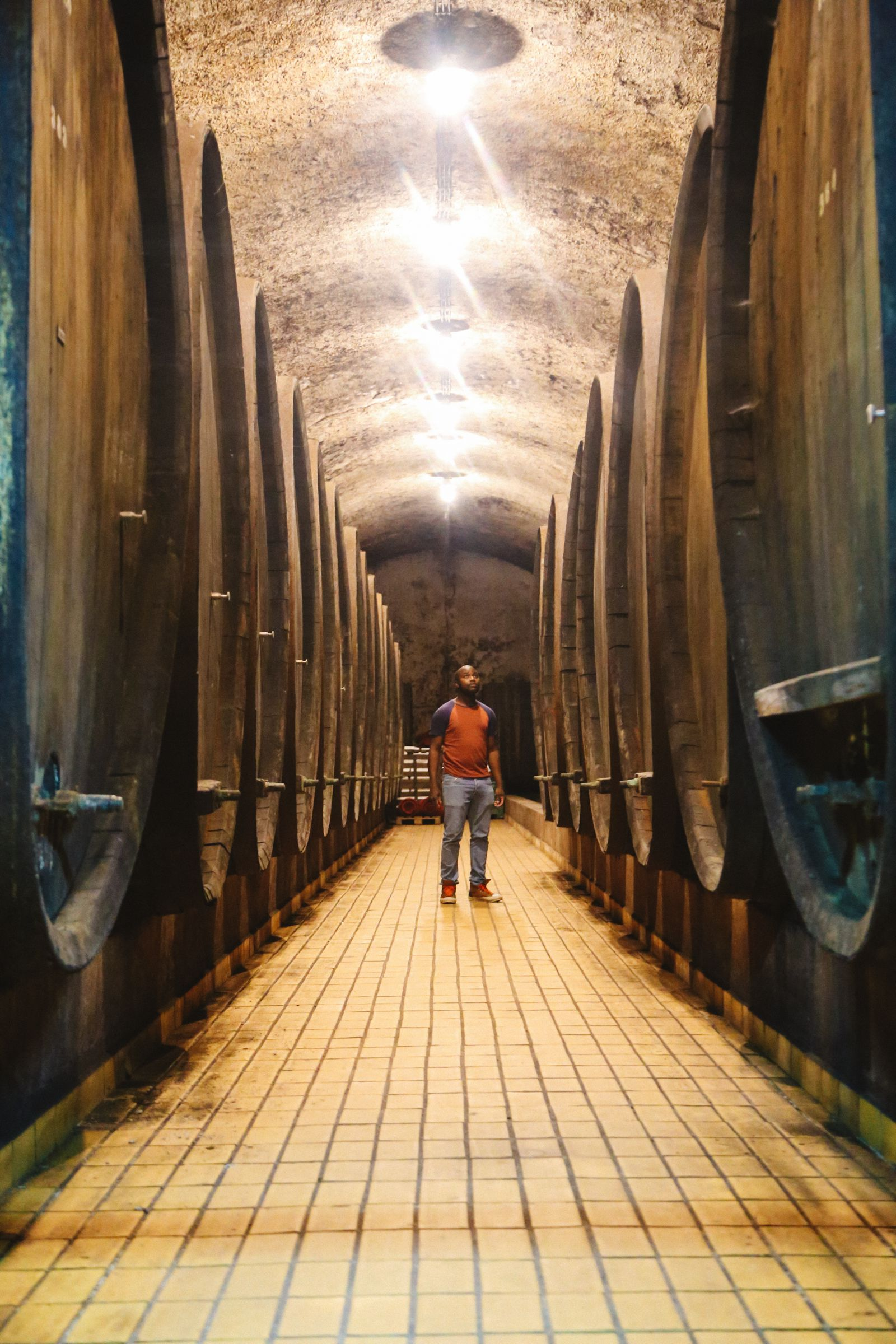 There's A Big Reason You Should Visit Slovenia This Year - The Wine! (16)