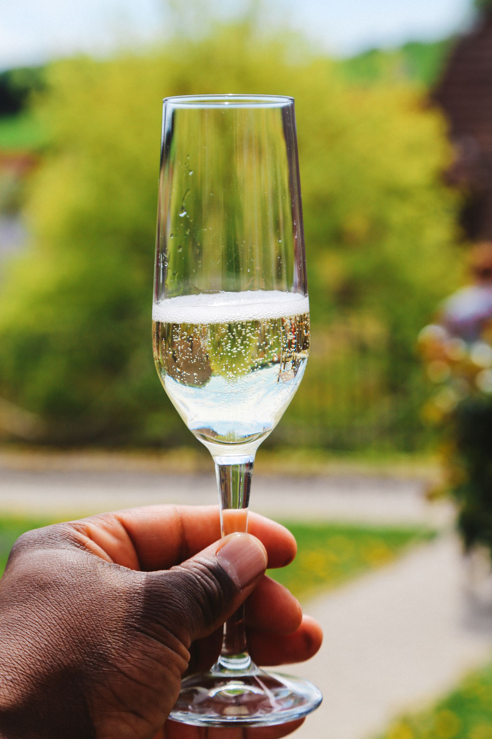 There's A Big Reason You Should Visit Slovenia This Year - The Wine! (53)