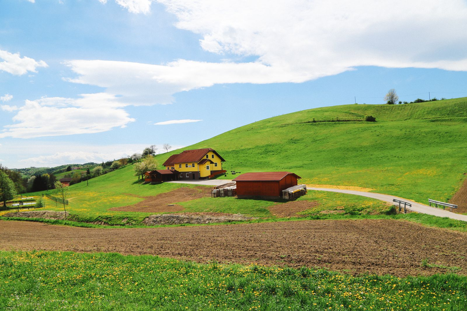 There's A Big Reason You Should Visit Slovenia This Year - The Wine! (67)