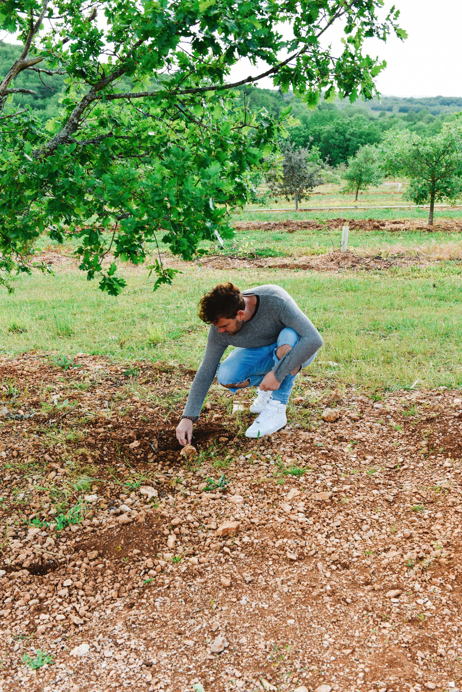 Truffle-Hunting, Chateau-Living And Wine-Tasting In the French Dordogne Valley (8)