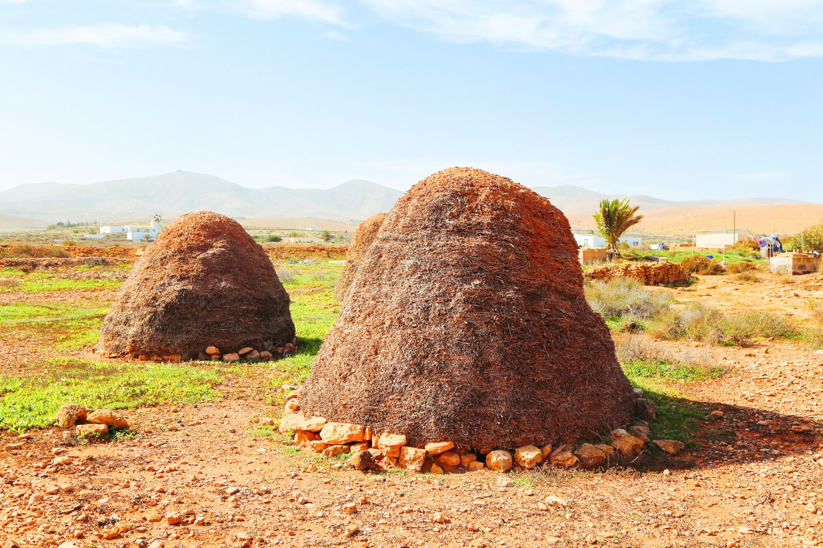 Windmills, Mountains, Little Farms And Sleepy Towns... In Fuerteventura, The Canary Islands (2)
