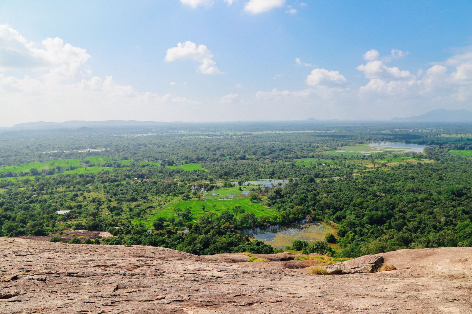This Is One Of The Best Views In Sri Lanka - Pidurangala Rock (41)