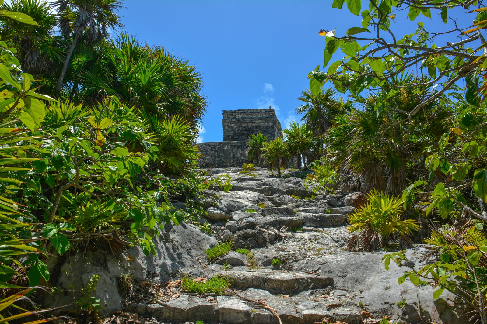 What Every Visitor Must Know About Visiting Tulum in Mexico (26)