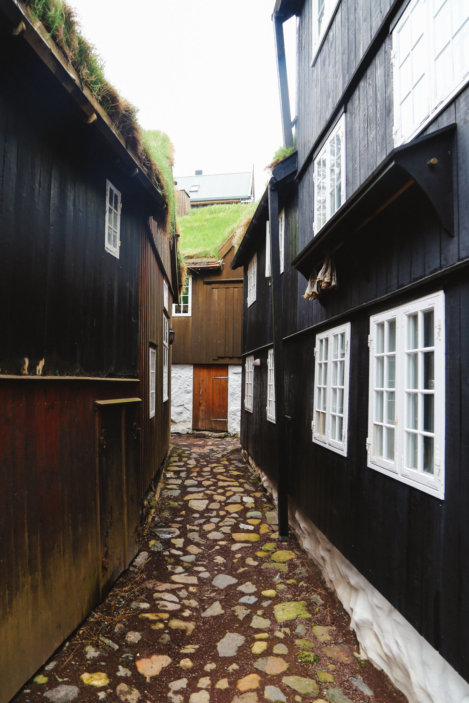 Exploring The Faroe Island's Rugged Buttercup Routes... (23)