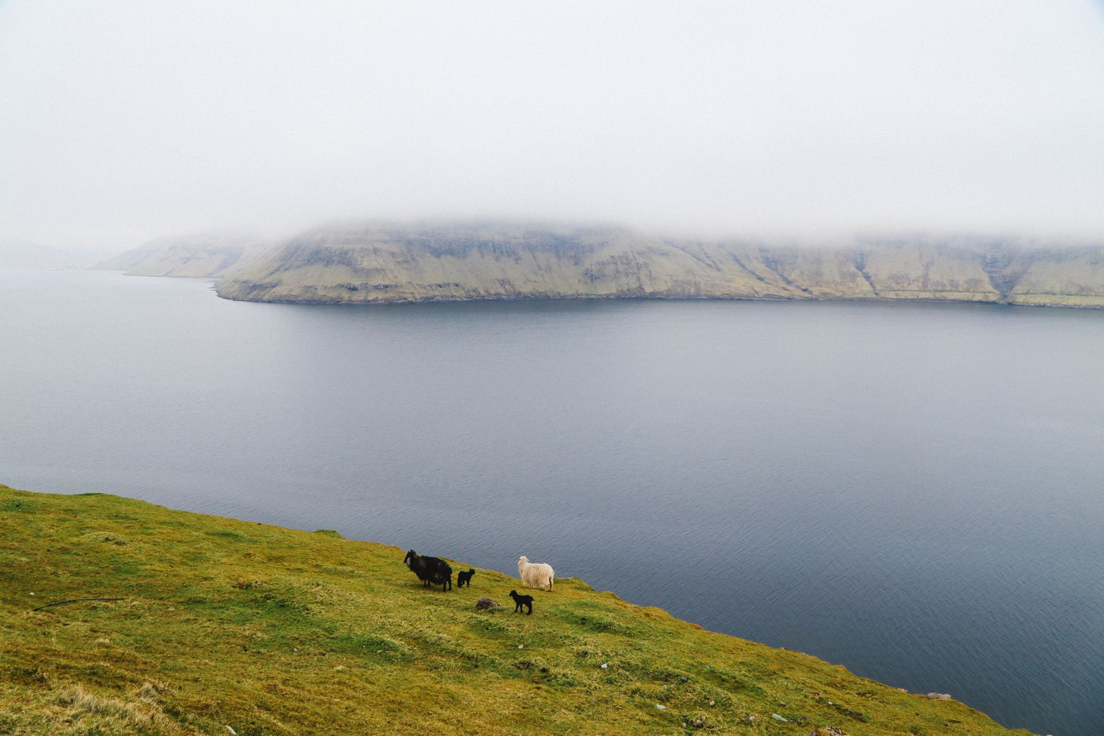 Exploring The Faroe Island's Rugged Buttercup Routes... (25)