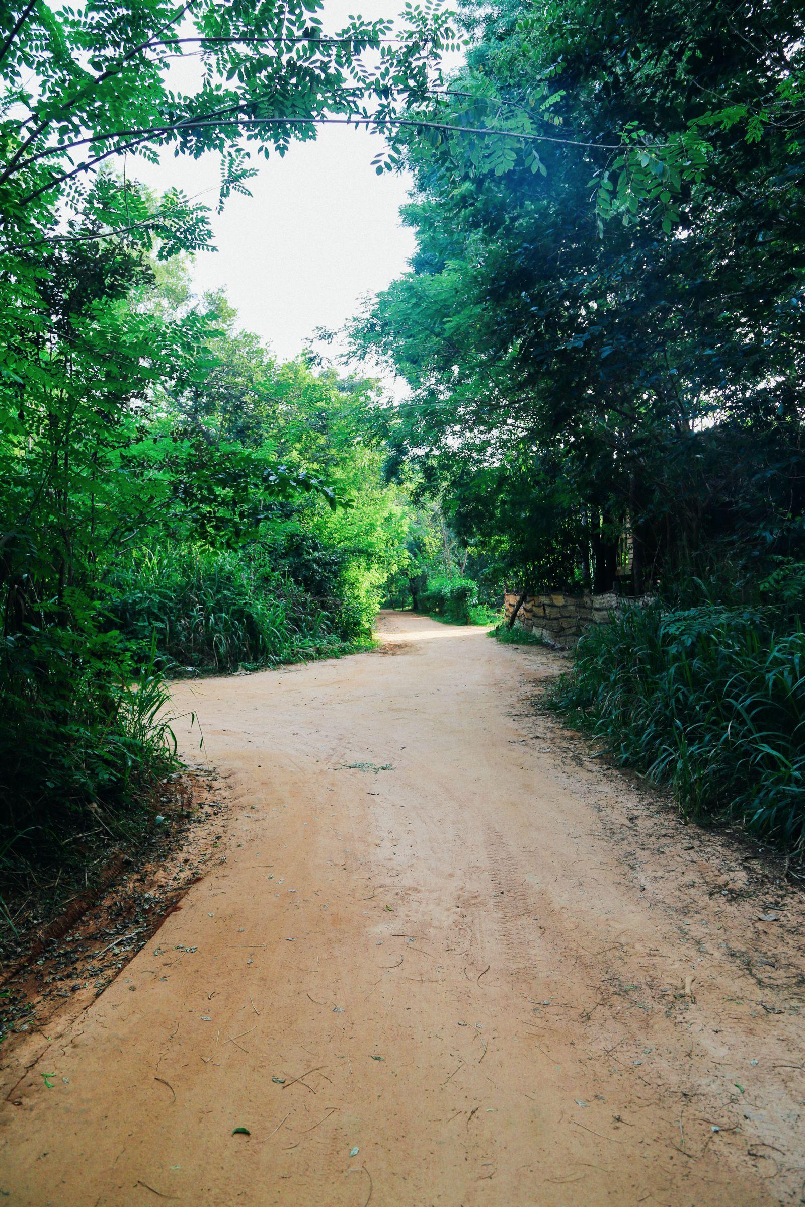 Dambulla Cave Temple And A Trip To Kandy, Sri Lanka (1)