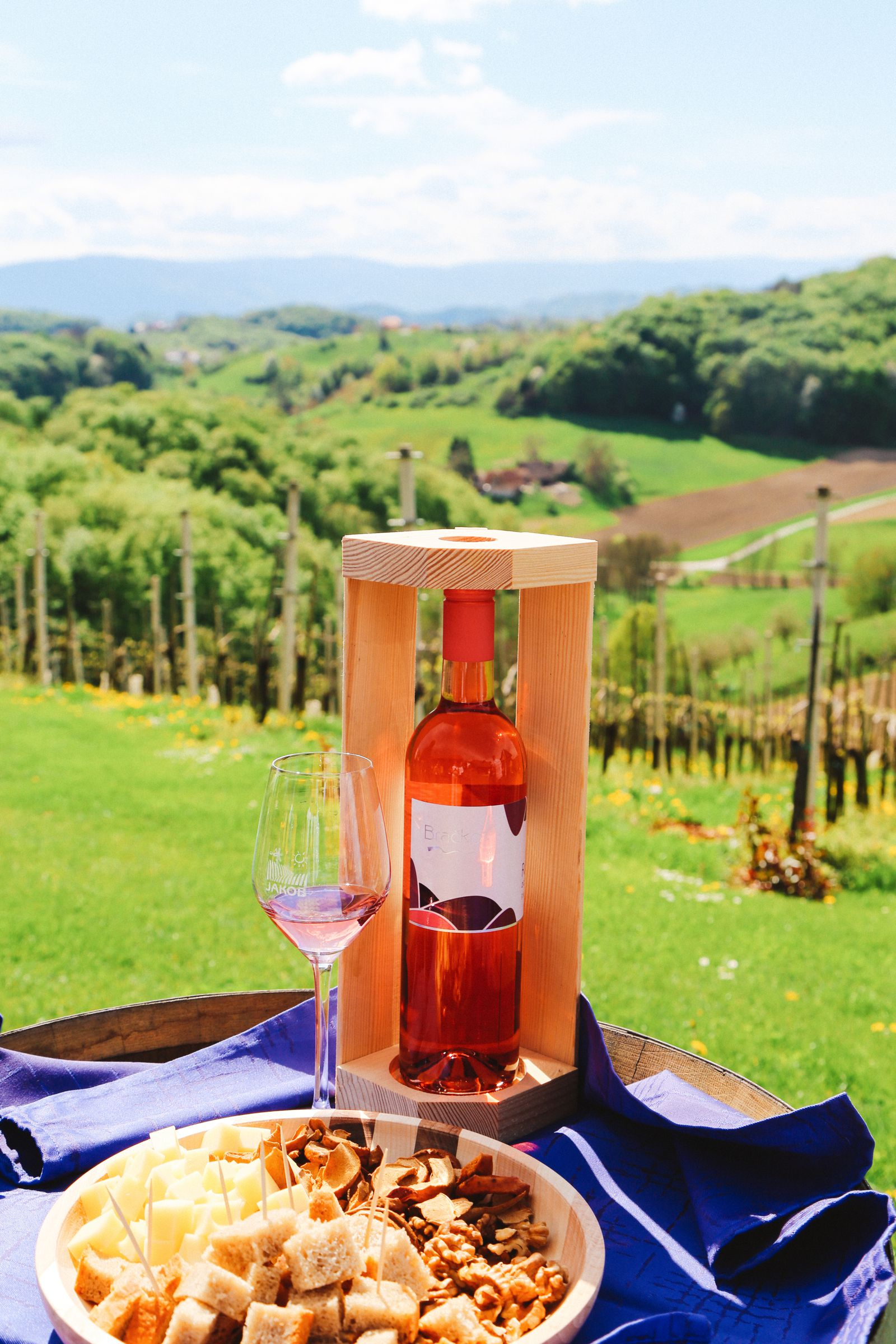 Vineyards, Charcuterie And The Old Historic City Of Maribor, Slovenia (3)
