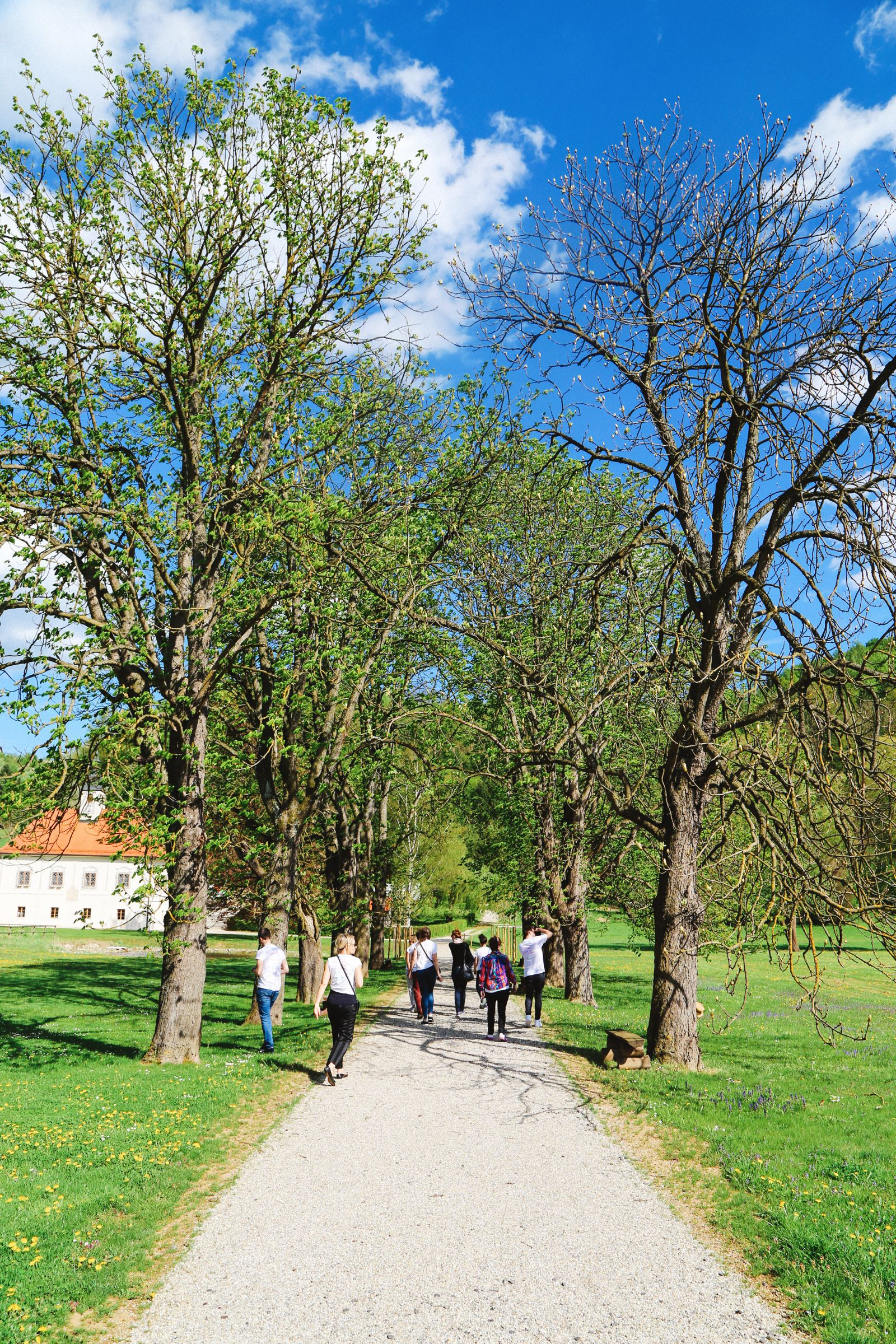 Vineyards, Charcuterie And The Old Historic City Of Maribor, Slovenia (16)
