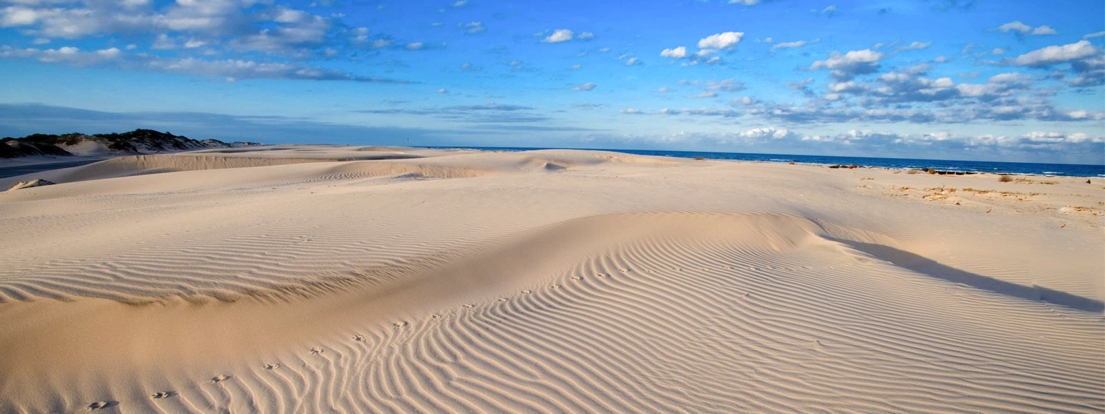 11 Amazing Beaches To Visit In The USA (6)