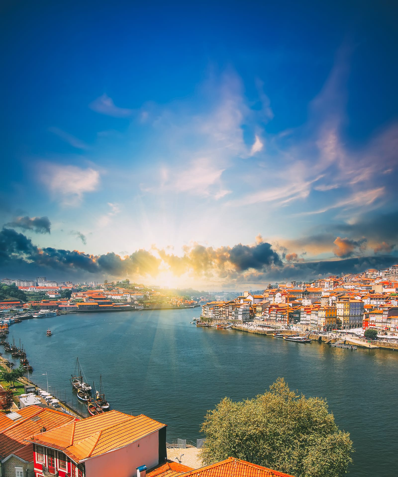 14 Fantastic Things To See In Porto - Portugal (10)