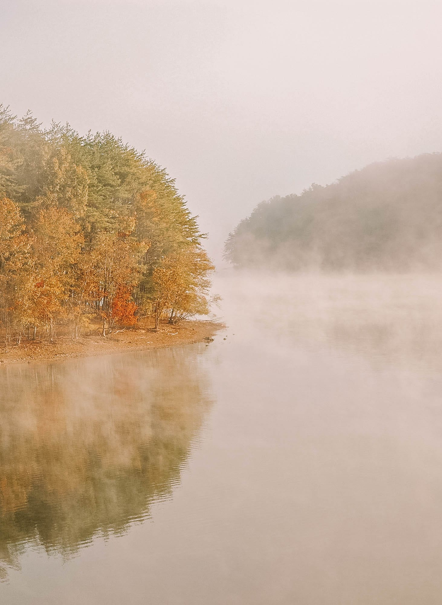 11 Best Things To Do In Tennessee, USA (6)