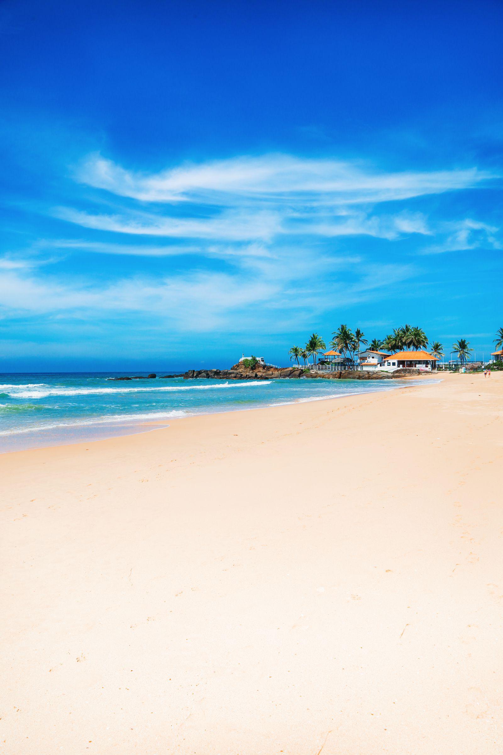 A Taste Of Sri Lanka... (23)
