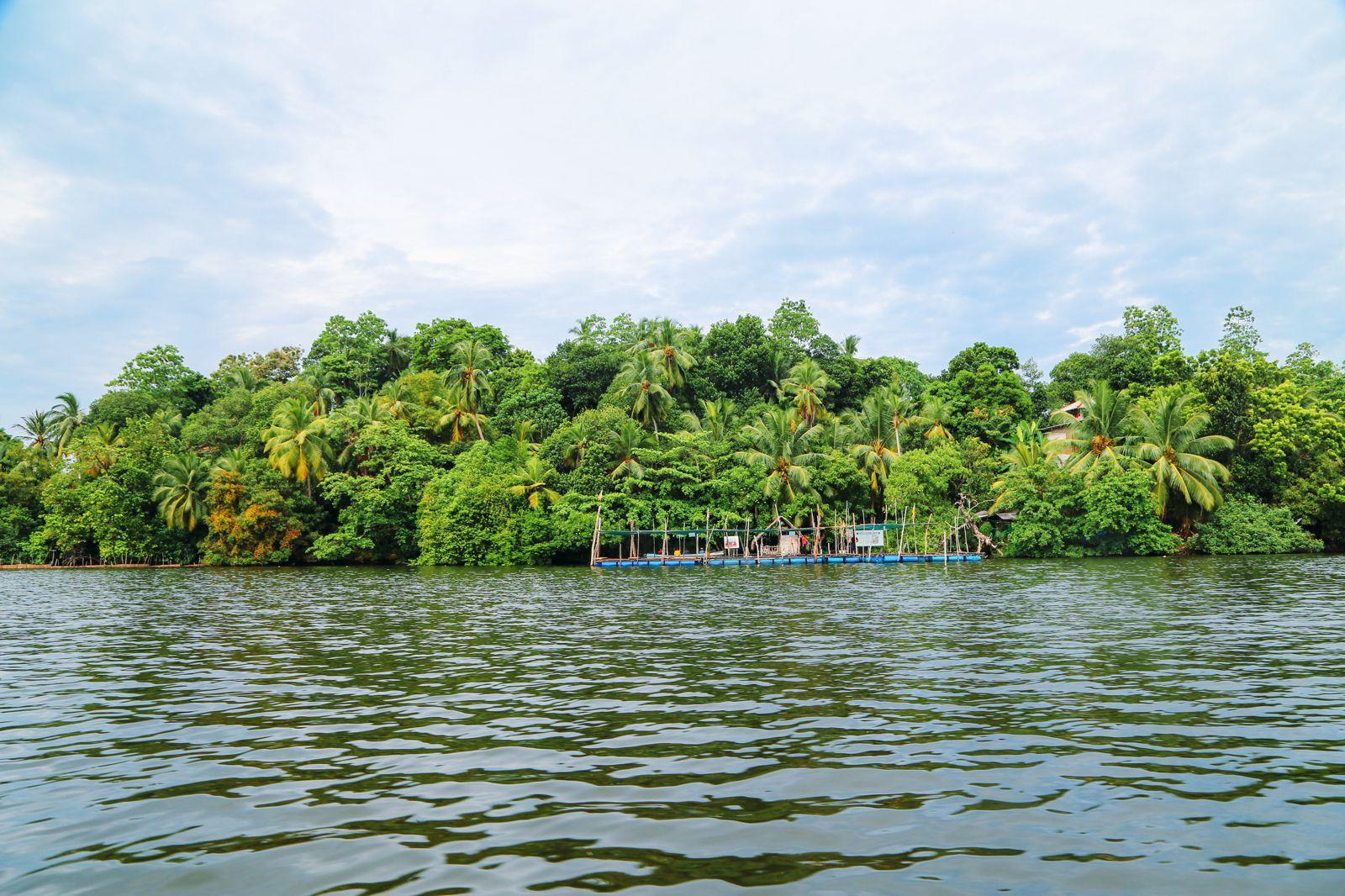 A Taste Of Sri Lanka... (21)