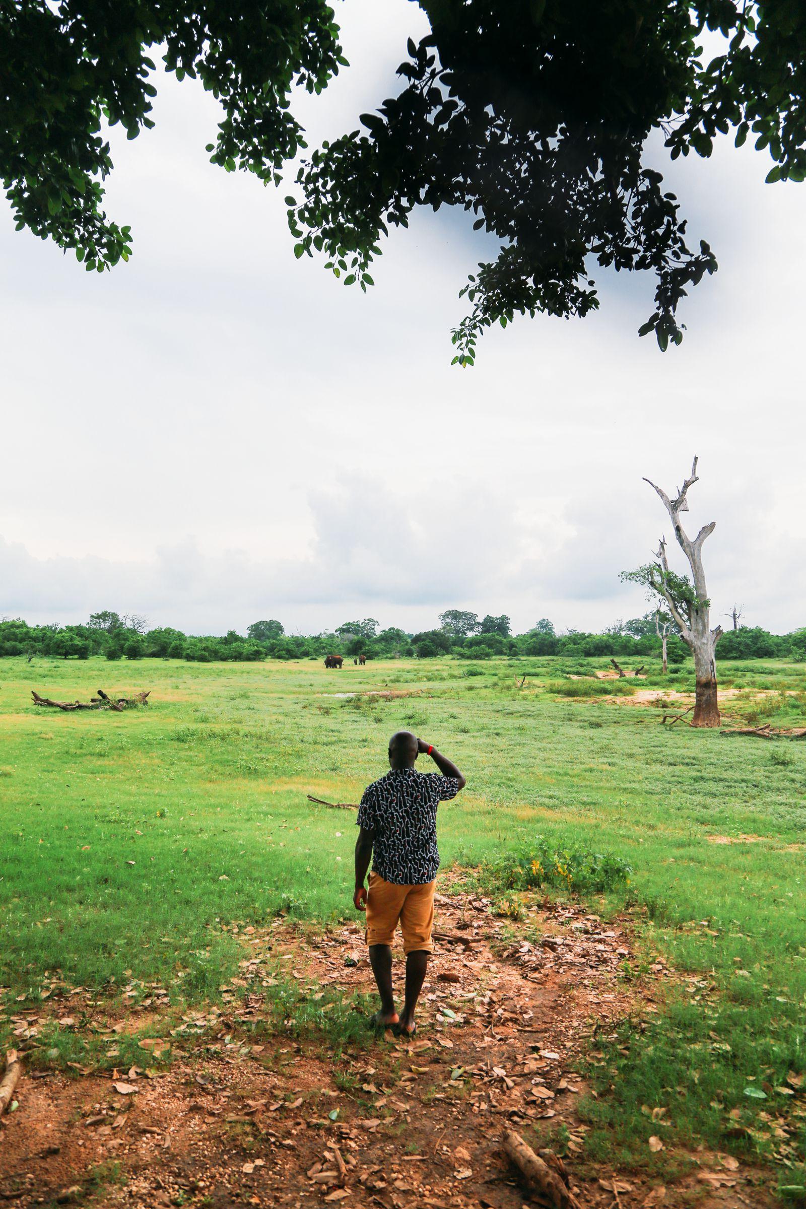 A Taste Of Sri Lanka... (3)