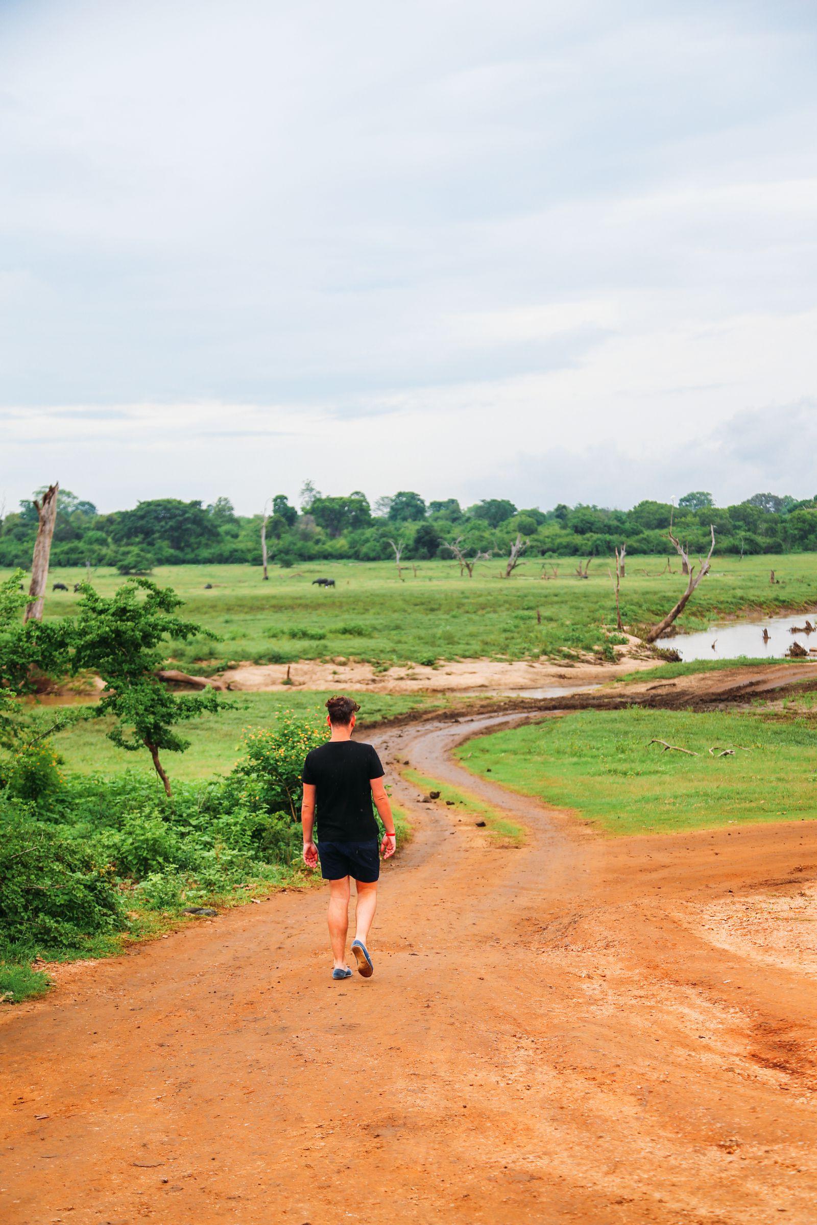 A Taste Of Sri Lanka... (2)