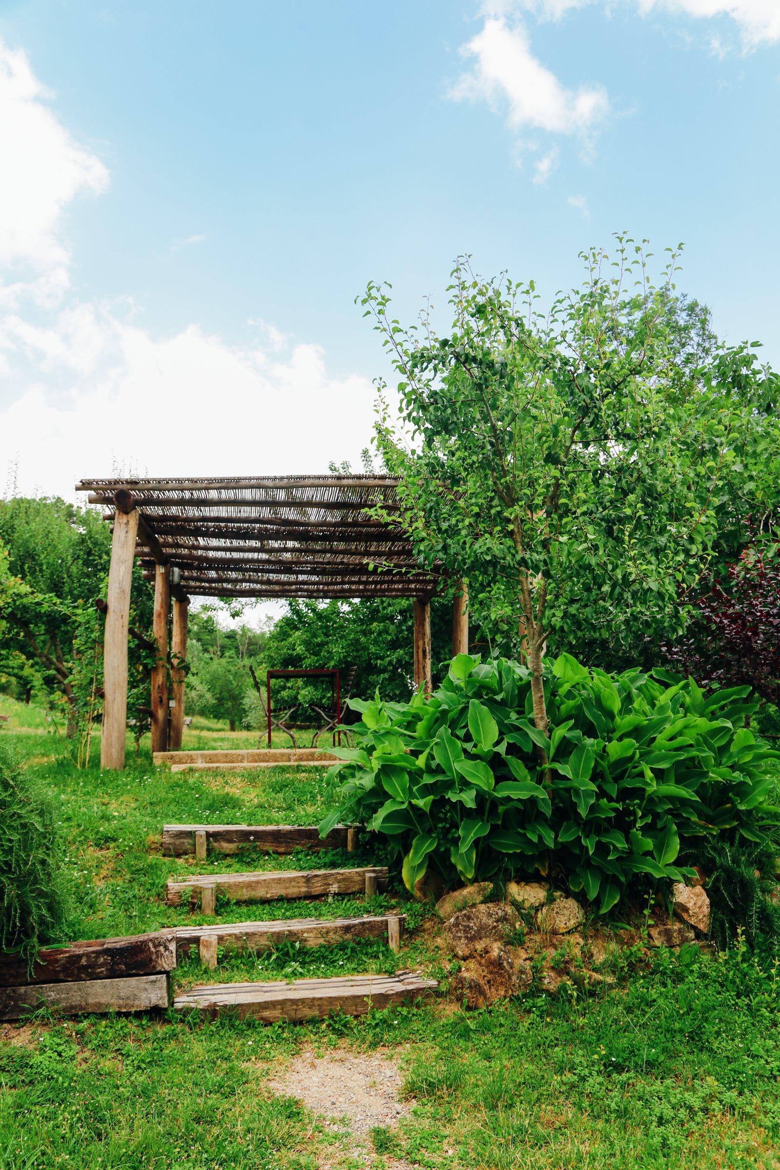 The Farmhouse... In Tuscany, Italy (36)