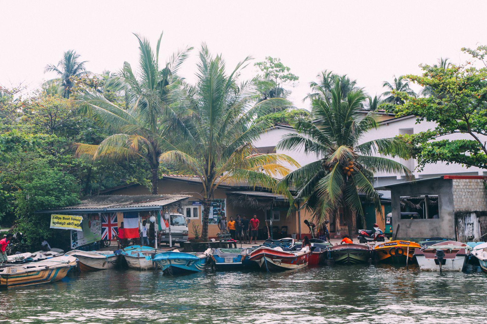 A Journey Down The Madu Ganga River, Sri Lanka (2)