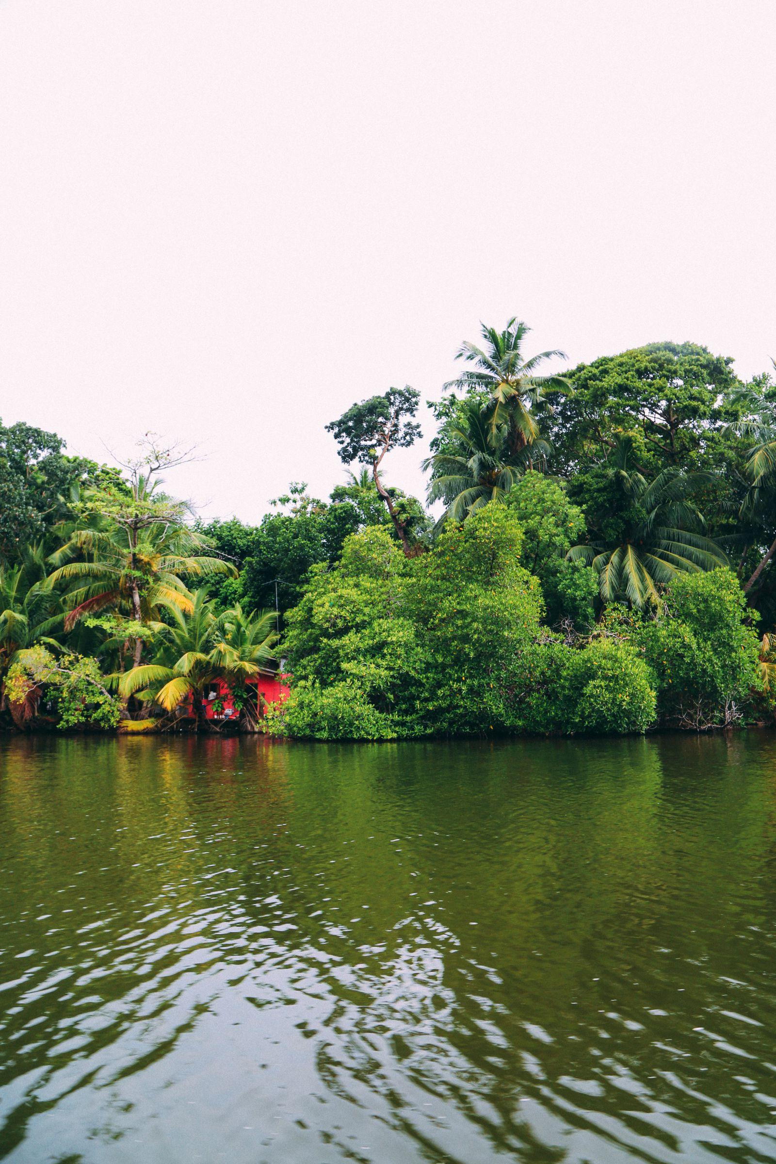 A Journey Down The Madu Ganga River, Sri Lanka (13)