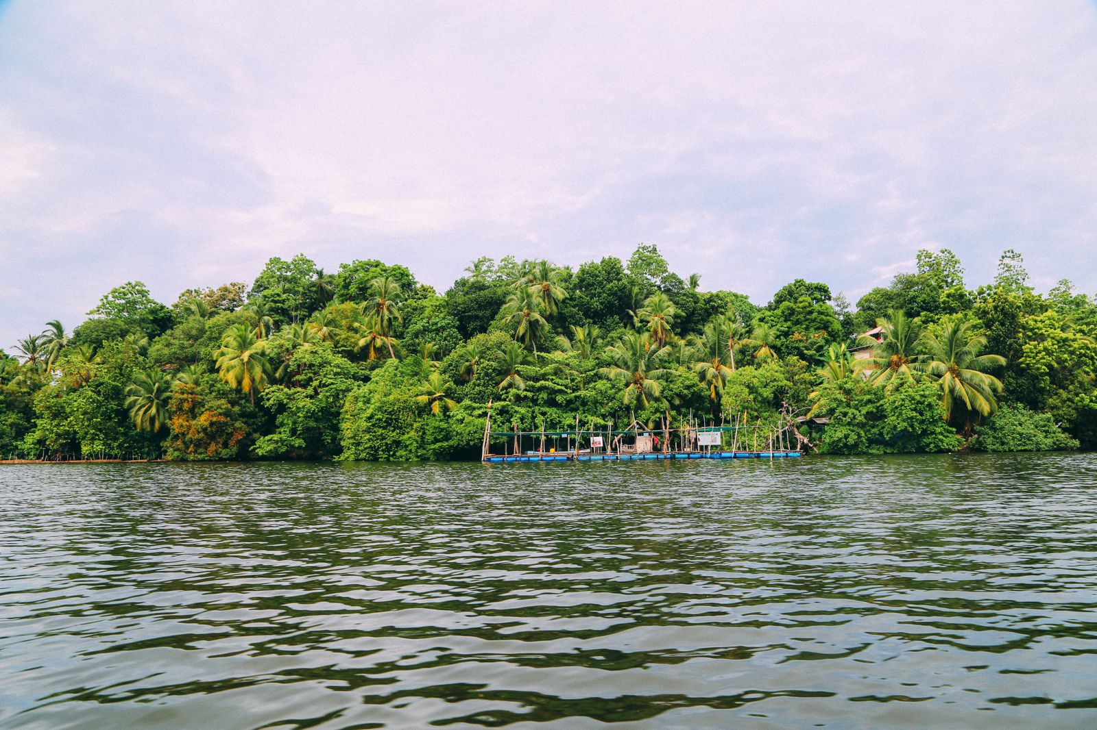 A Journey Down The Madu Ganga River, Sri Lanka (15)