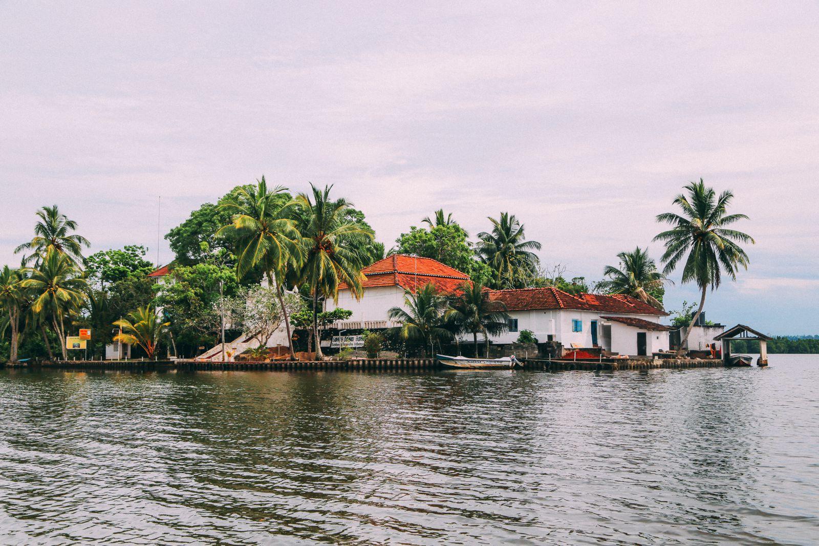 A Journey Down The Madu Ganga River, Sri Lanka (16)