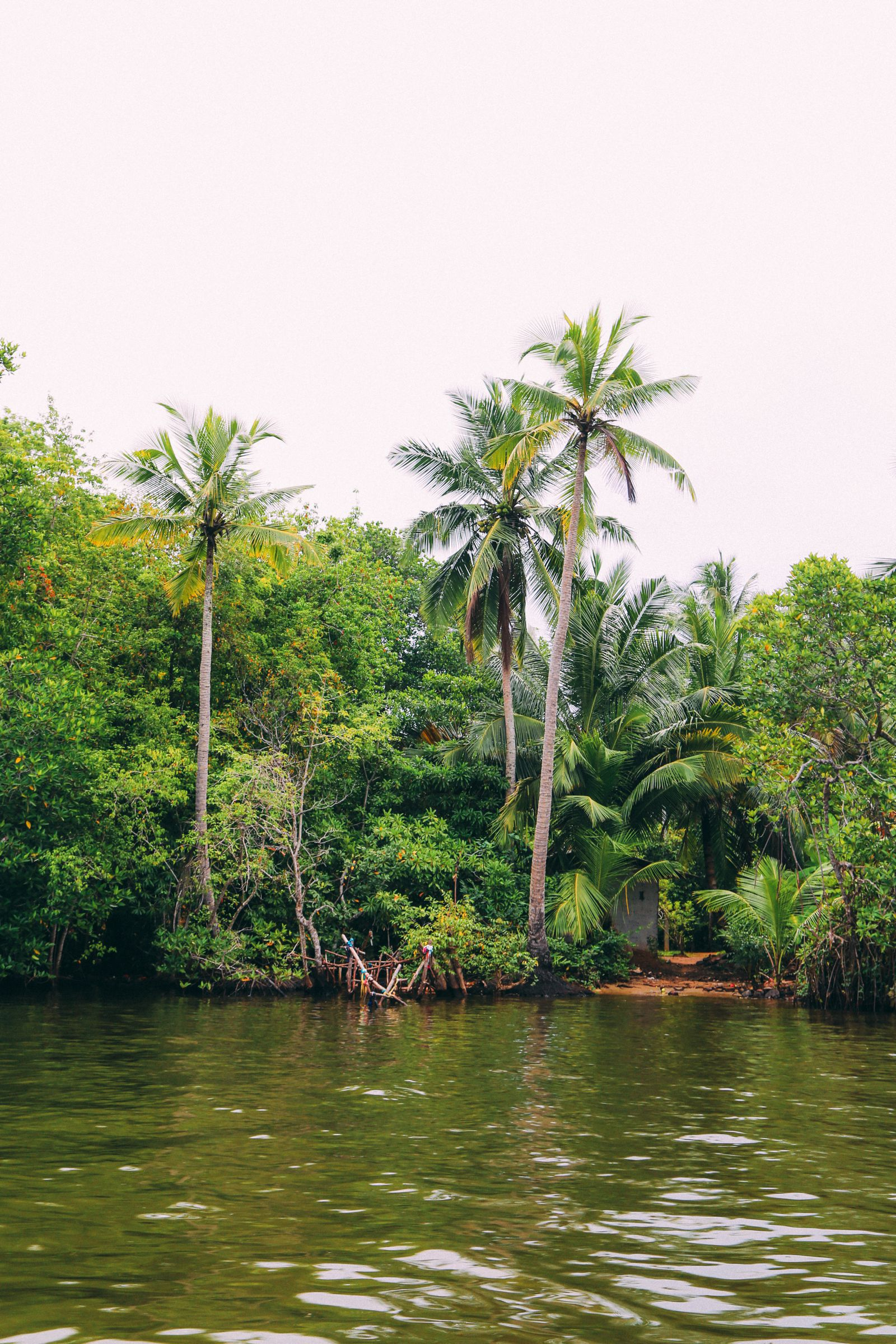 A Journey Down The Madu Ganga River, Sri Lanka (33)