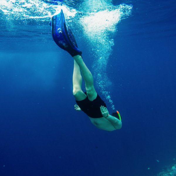 Reef Explorers... At the Angsana Velavaru Maldives (20)