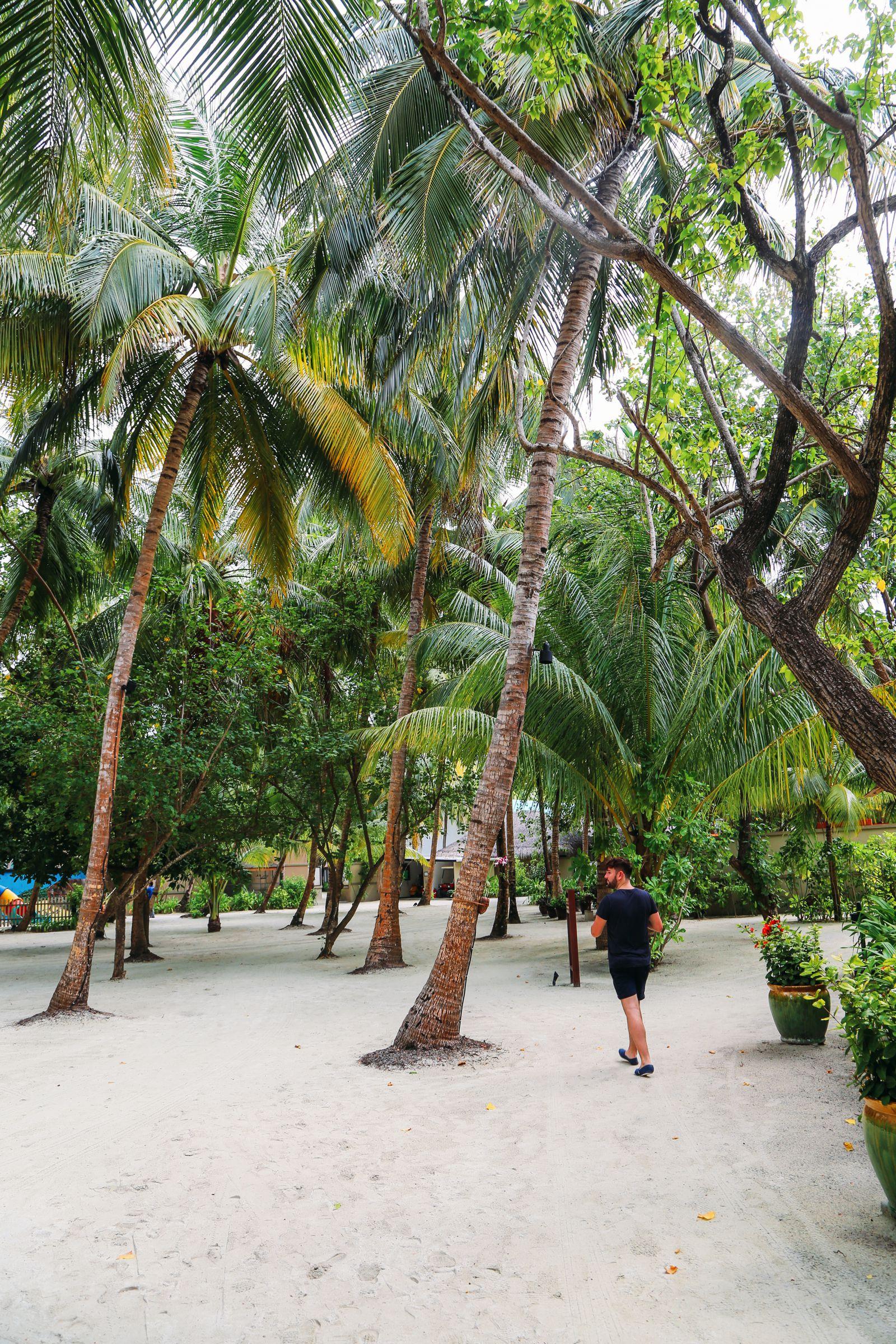The View From Above... At The Angsana Velavaru Maldives (26)