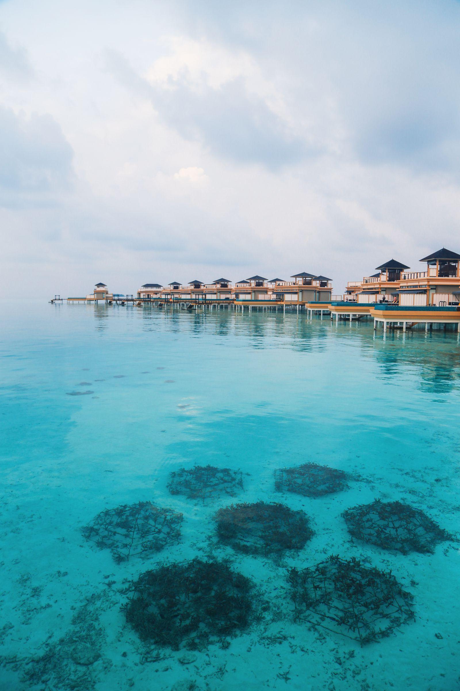 The View From Above... At The Angsana Velavaru Maldives (43)