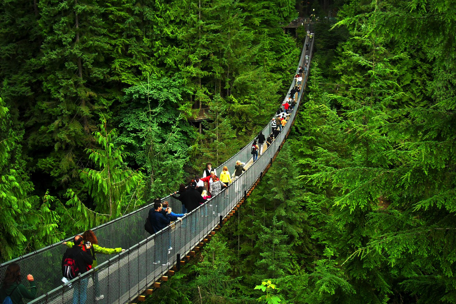 14 Fantastic Places You Have To Visit In Vancouver, Canada (15)