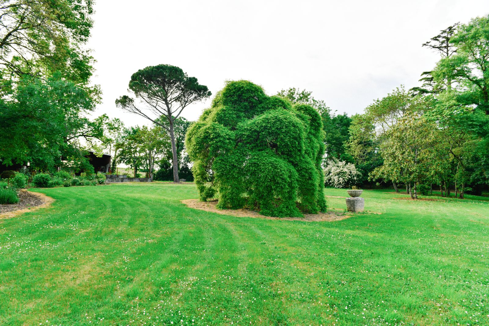 Beautiful French Chateaus And Michelin Star Dining In The Dordogne Valley (19)