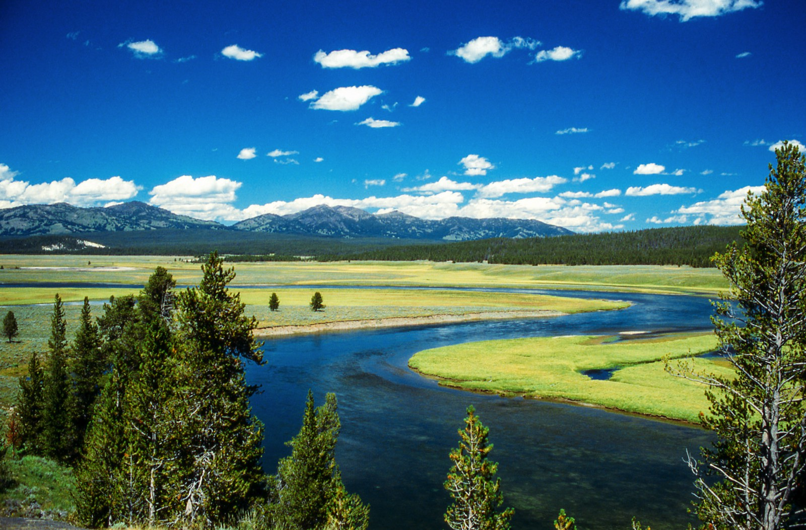 10 Dramatic Sights You Have To See In Yellowstone National Park, USA (8)