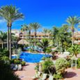 An Oasis In The Desert… In Fuerteventura, The Canary Islands
