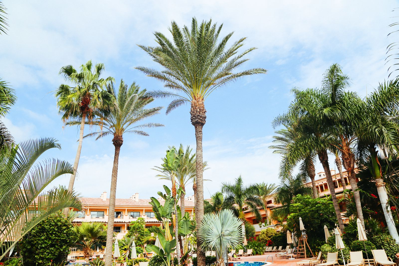 An Oasis In The Desert... In Fuerteventura, The Canary Islands (47)