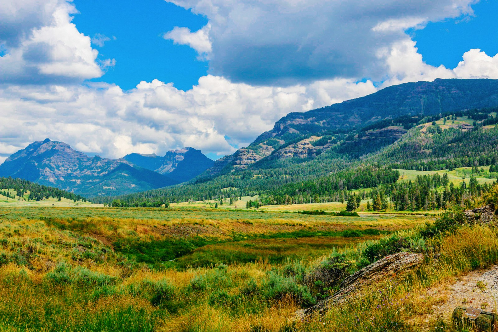 10 Dramatic Sights You Have To See In Yellowstone National Park, USA (9)