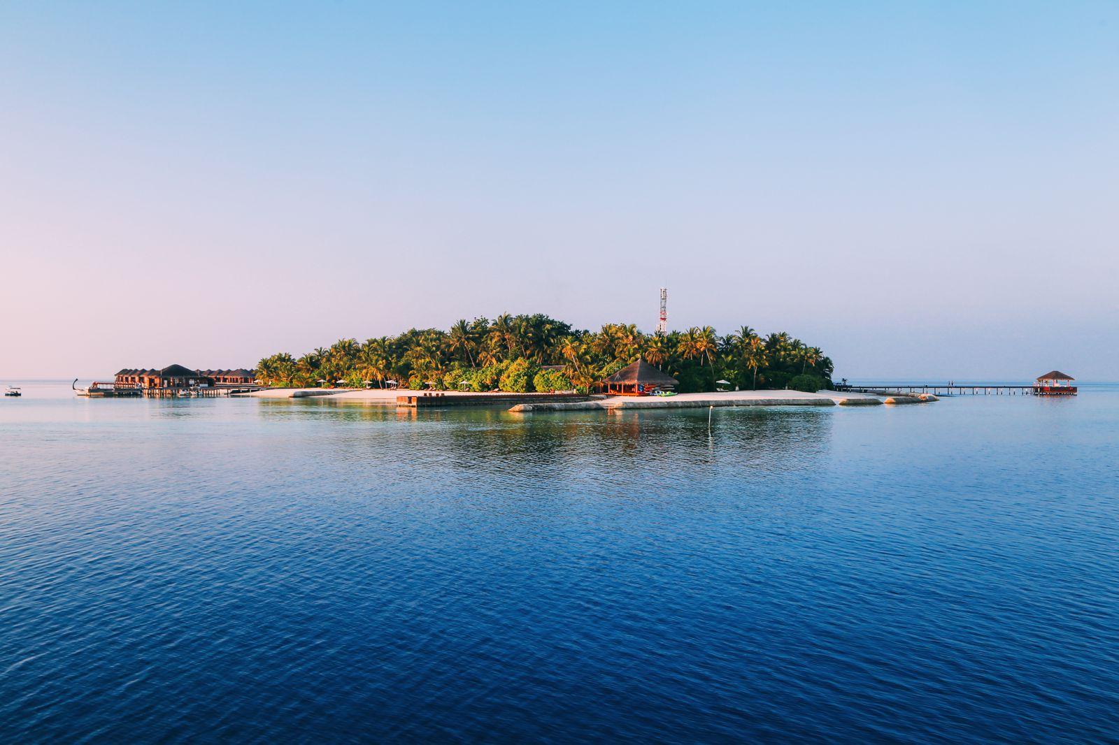 Maafushivaru, Birthing Dolphins And Swimming With Manta Rays... In The Maldives (8)