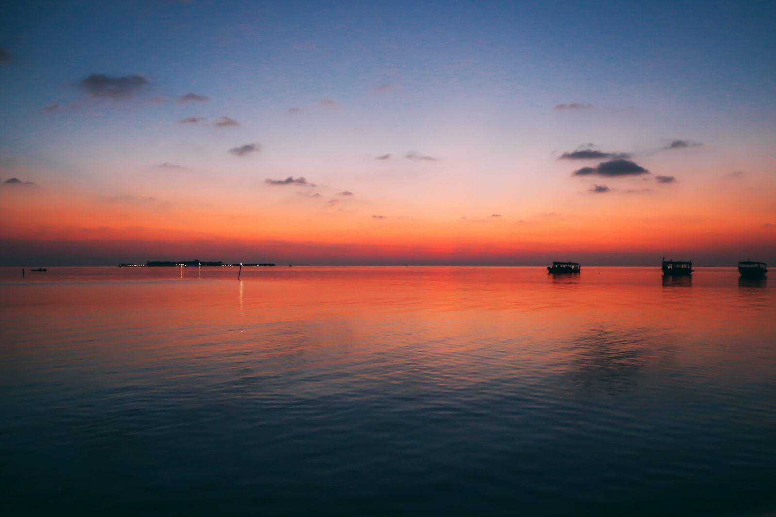 Maafushivaru, Birthing Dolphins And Swimming With Manta Rays... In The Maldives (27)