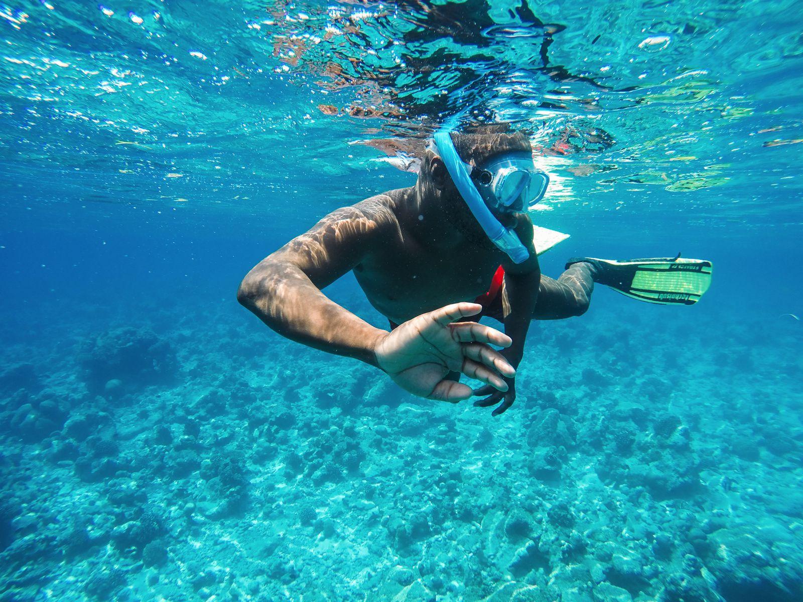 Maafushivaru, Birthing Dolphins And Swimming With Manta Rays... In The Maldives (64)