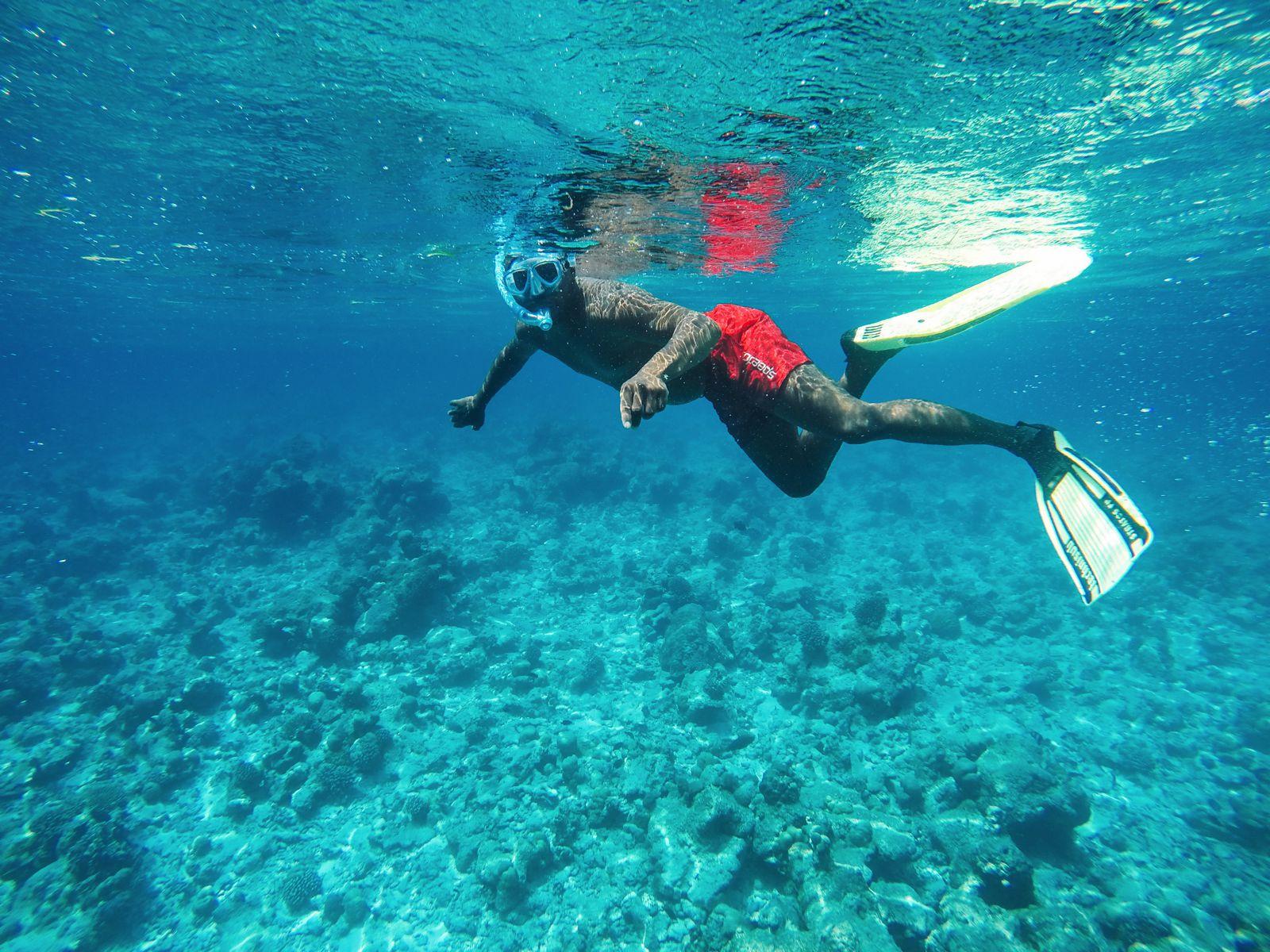Maafushivaru, Birthing Dolphins And Swimming With Manta Rays... In The Maldives (66)