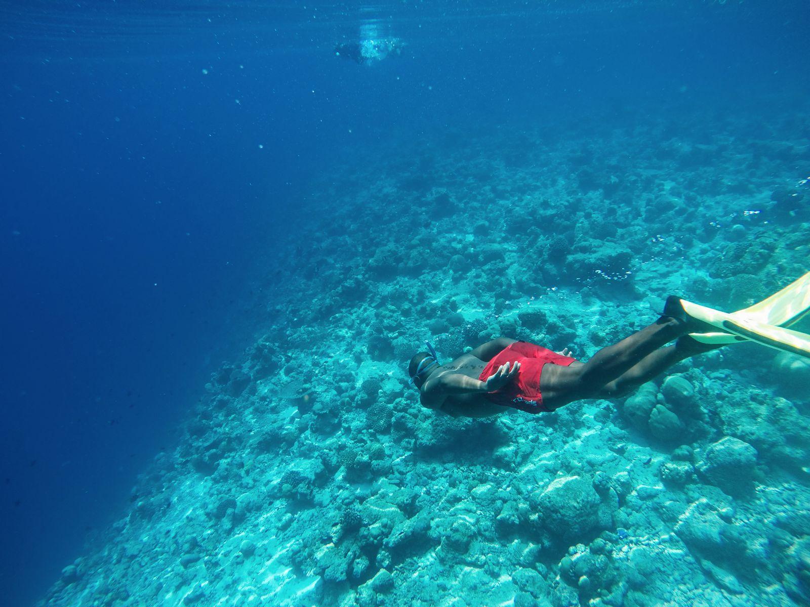 Maafushivaru, Birthing Dolphins And Swimming With Manta Rays... In The Maldives (67)