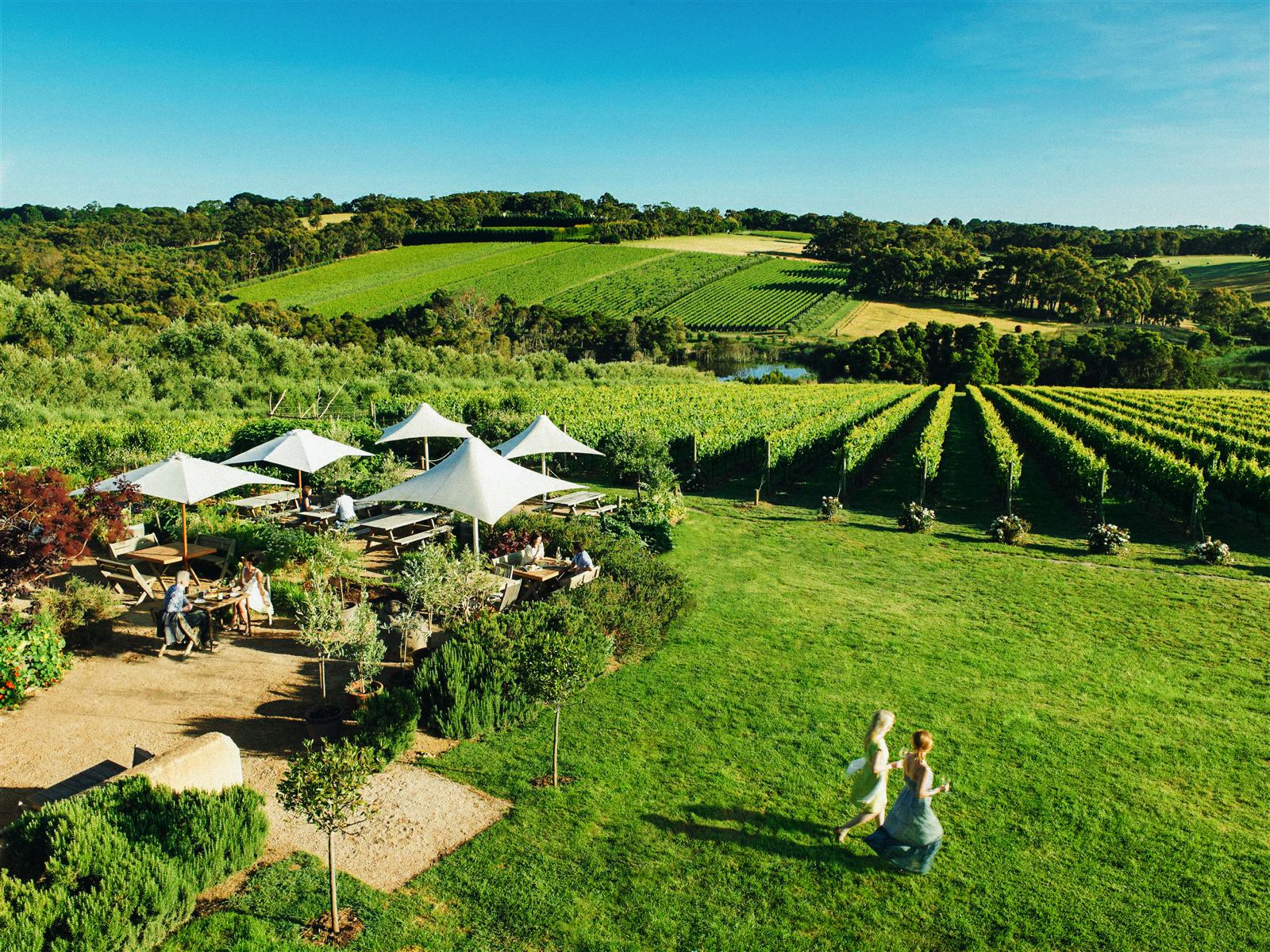 10 Incredible Vineyards You Have To Visit In Australia (5)