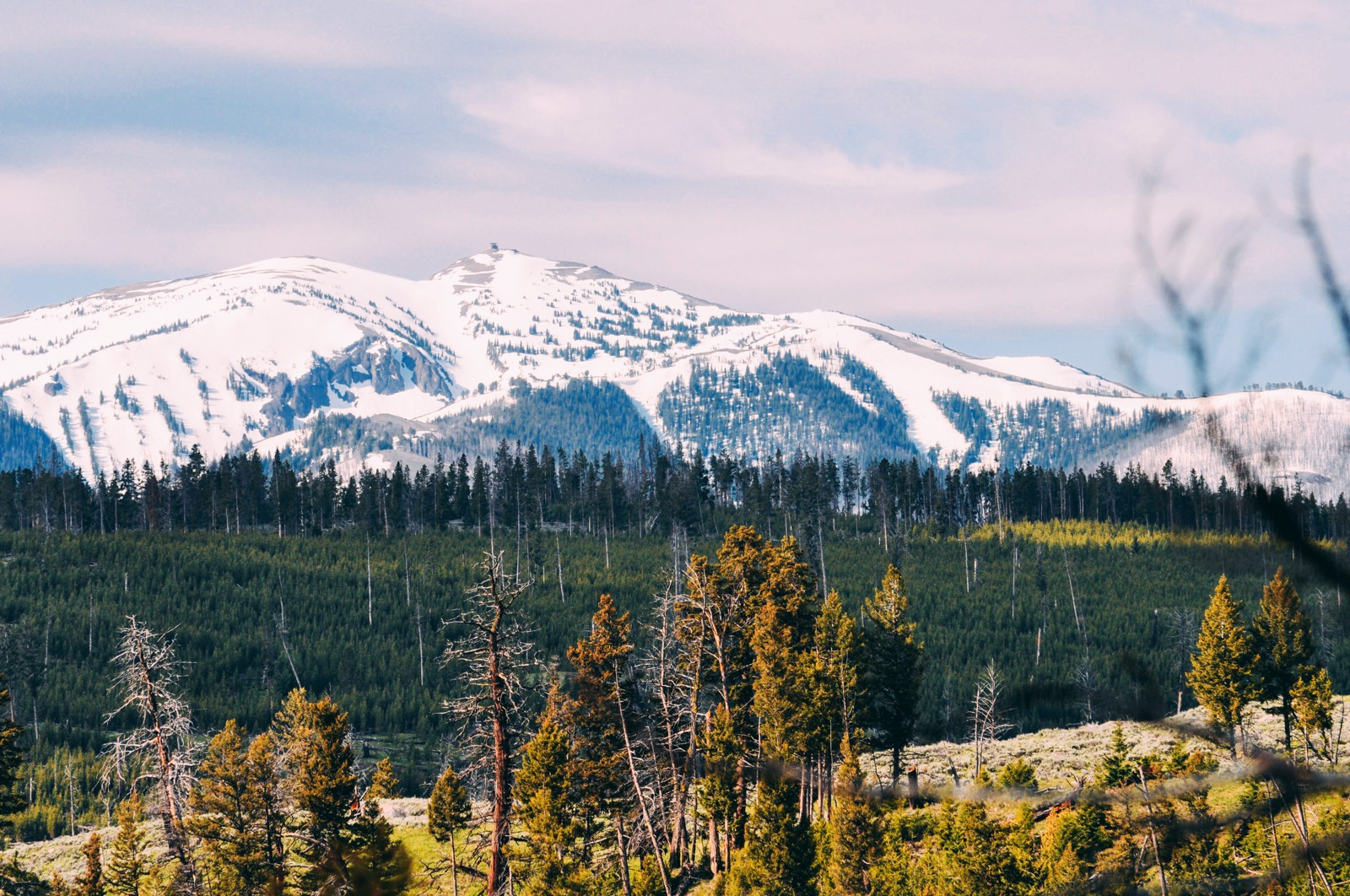 10 Dramatic Sights You Have To See In Yellowstone National Park, USA (16)