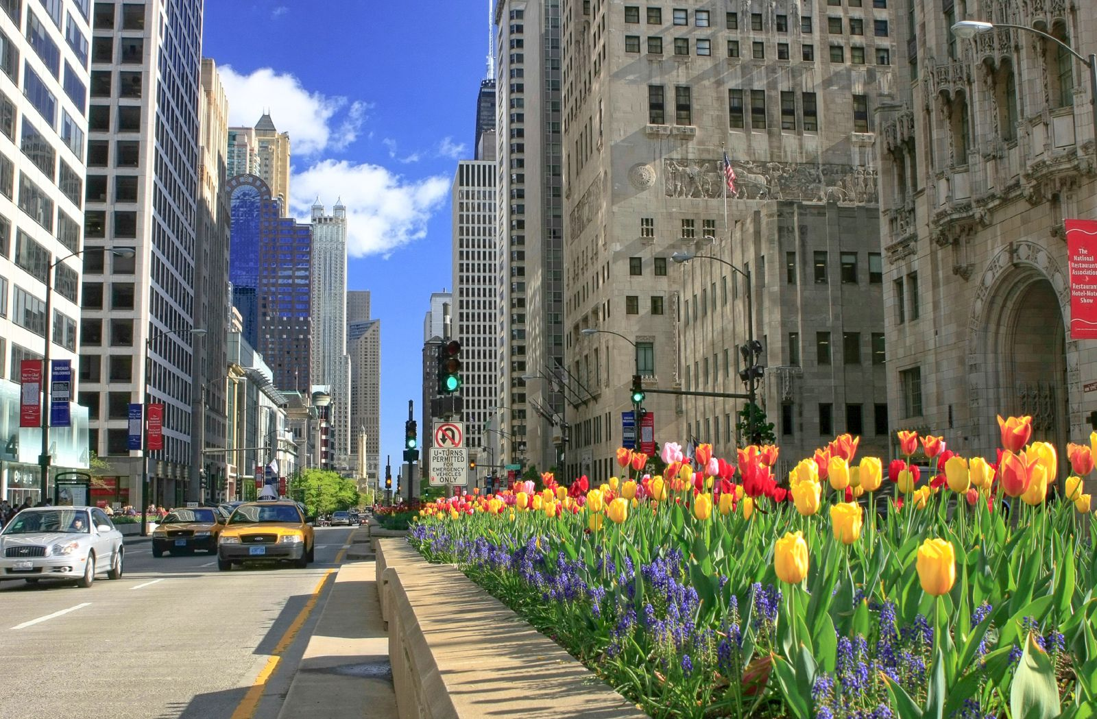 10 Incredible Things You Must Do In Chicago (12)