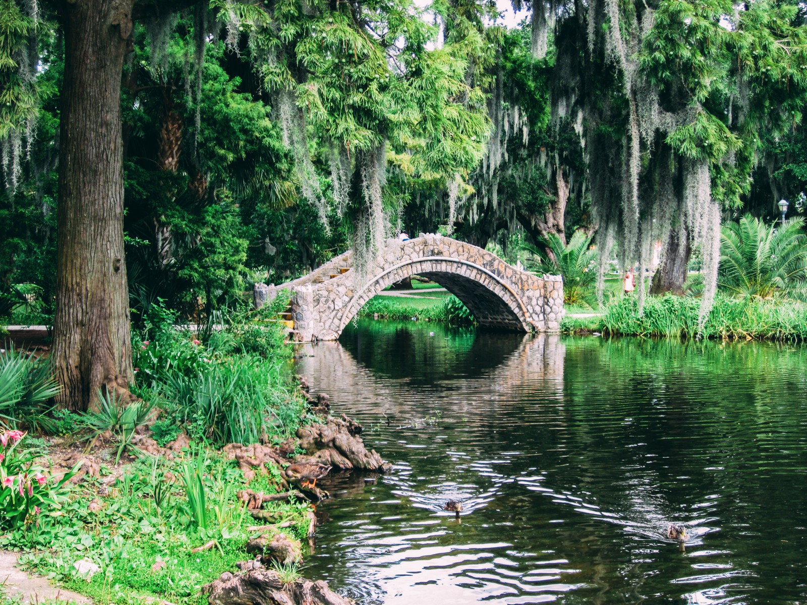 11 Fantastic Sights You Have To See In New Orleans, USA (10)