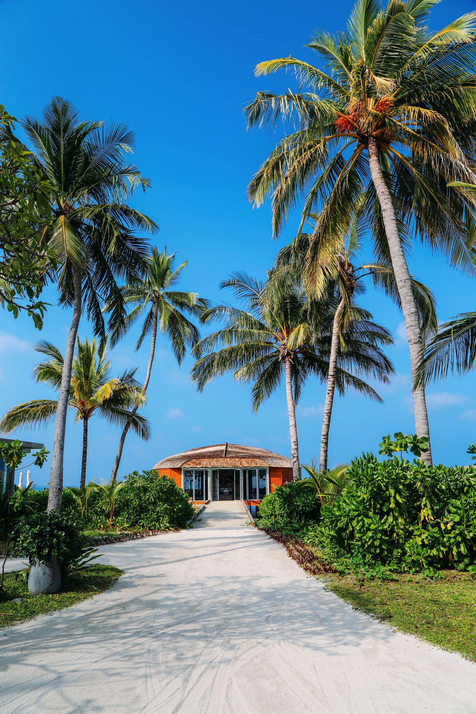 The Long Island Of Kuramathi... In The Maldives (34)