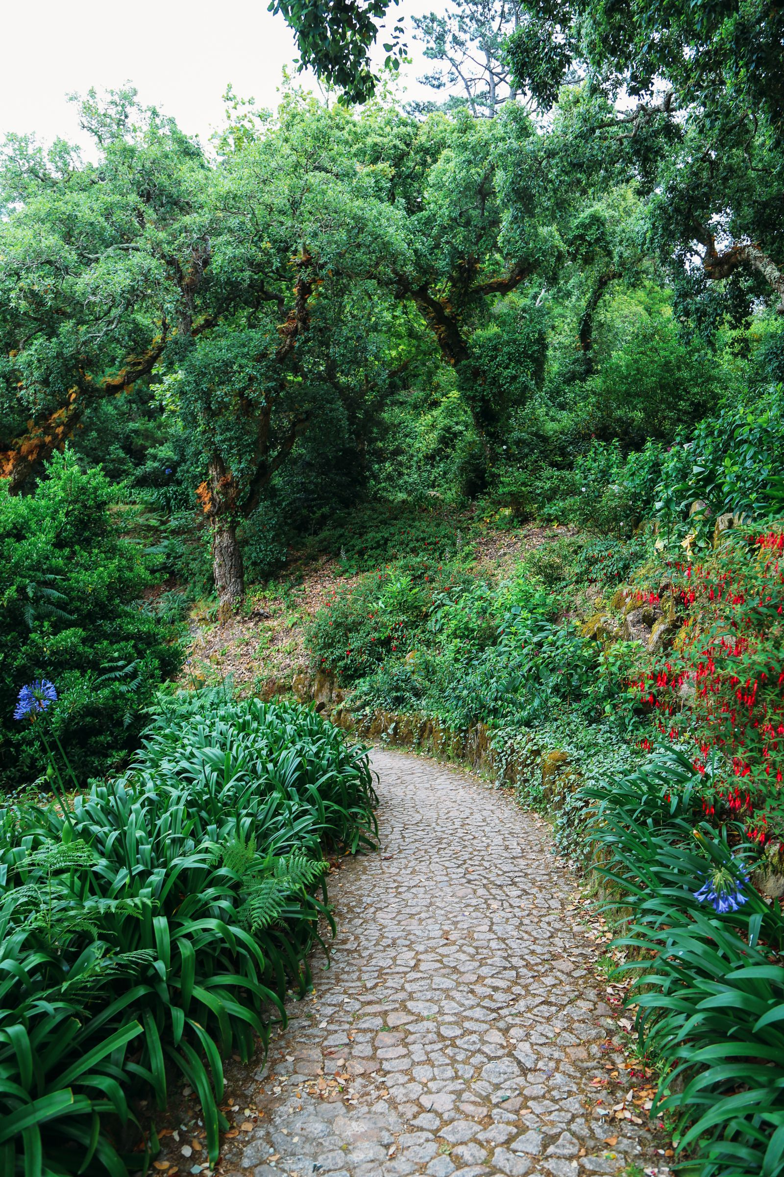 The Amazing Monserrate Palace – An Often Missed Beauty In Sintra, Portugal (2)