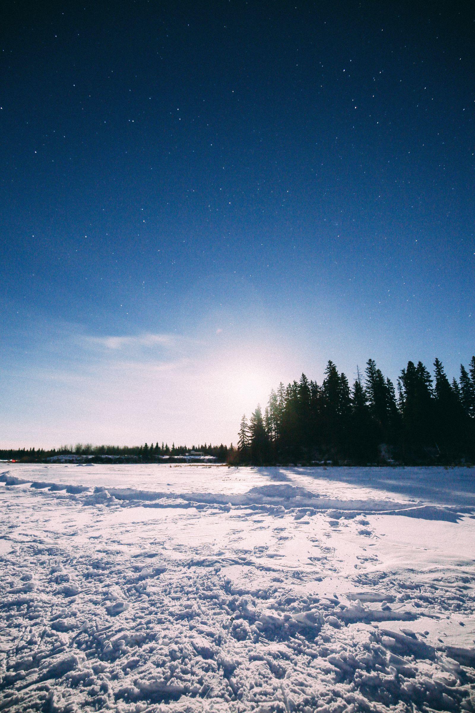 Midnight Moonlight Snowshoeing... In Edmonton, Canada (50)