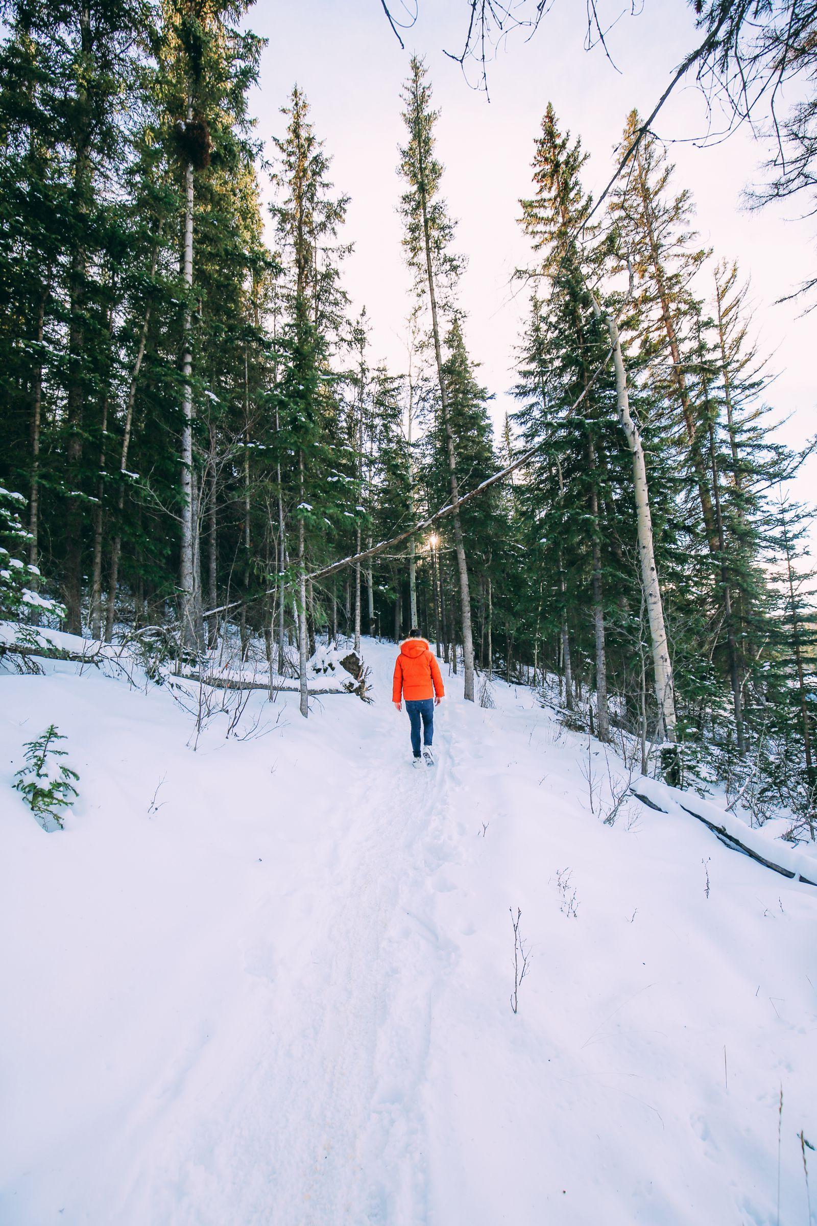 The Amazing Beauty Of Jasper National Park... In Alberta, Canada (44)