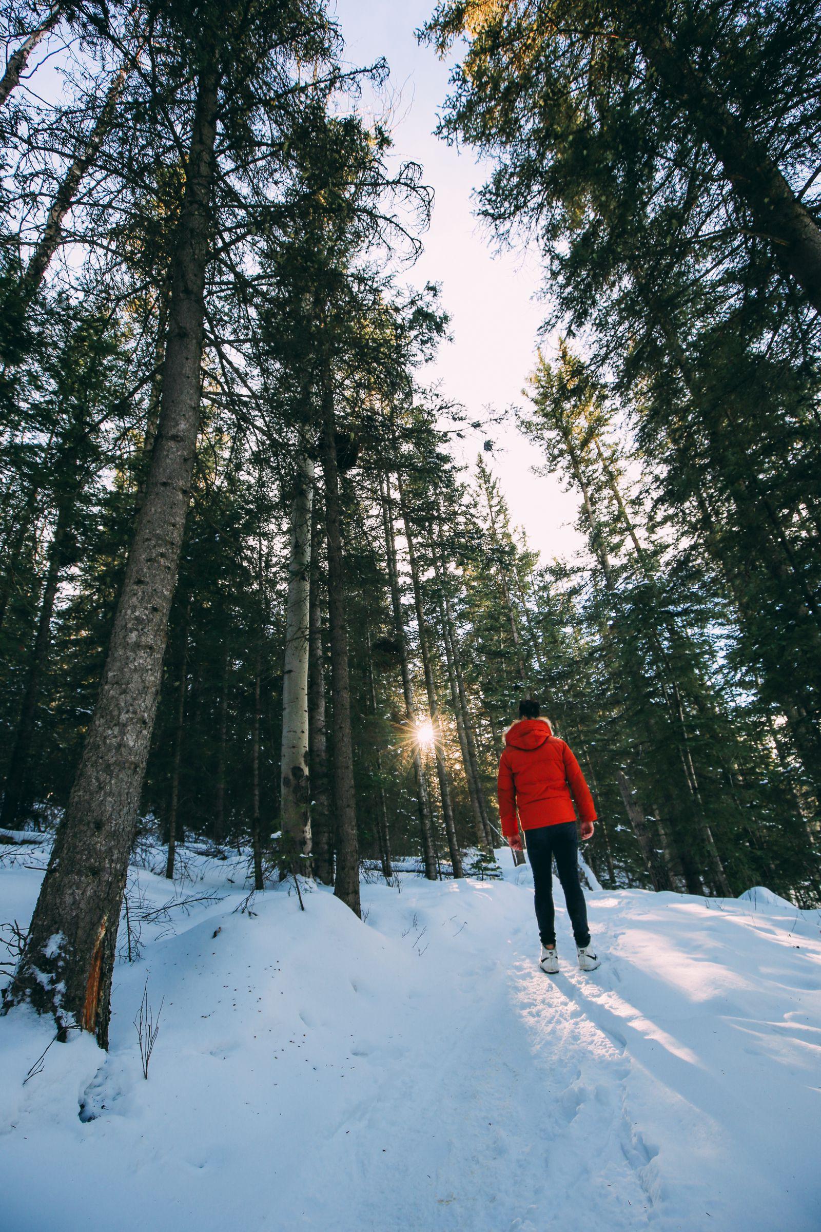 The Amazing Beauty Of Jasper National Park... In Alberta, Canada (46)